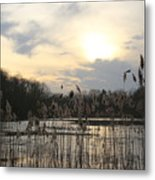 End Of Day At The Lake Metal Print
