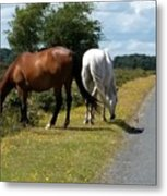England - Wild Horses Metal Print