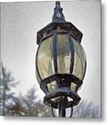 English Victorian Style Park Lamp Metal Print