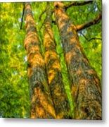 Enlightened Trees Metal Print