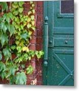 Enter Vine Door Metal Print