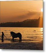 Equine Beach Time Metal Print