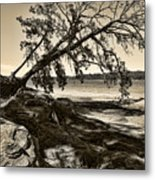 Erosion - Anselized Metal Print
