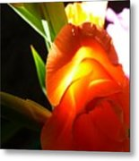 Erotic Of Flower Metal Print