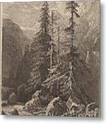 Essais De Gravure ? L'eau Forte Par Alexandre Calame, I, Pl. 21 Metal Print