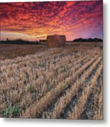 Essex Hay At Sunrise Metal Print