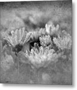 Etched In Stone 6 Metal Print