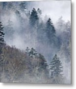 Ethereal Forest - D008248 Metal Print