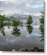 Ethereal Reflections Metal Print