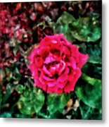 Etude  With       Rose -oil Metal Print