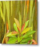 Eucalyptus And Leaves Metal Print