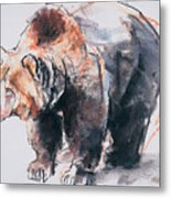European Brown Bear Metal Print