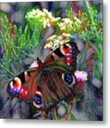 European Peacock Butterfly Metal Print