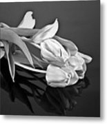 Even Tulips Are Beautiful In Black And White Metal Print