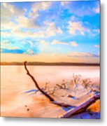 Evening At The Pond Metal Print