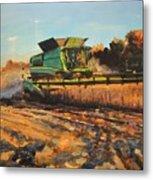 Evening Harvest Metal Print