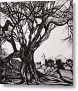 Evening In Midnapore Metal Print
