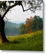 Evening In The Pasture Metal Print
