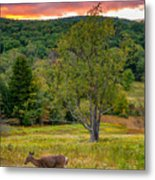 Evening In The Valley Metal Print