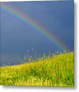 Evening Rainbow Over Pasture Field Metal Print