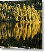 Evening Reflections On Alder Lake Metal Print