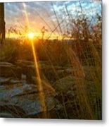 Evening Sun Rays In The Desert Metal Print