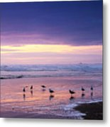 Evening Tide Reflections Metal Print
