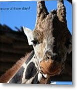 Ever Have One Of Those Days Metal Print