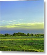 Everglades Panorama  Metal Print
