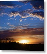 Everglade Sunset Metal Print