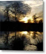 Everglade View Metal Print