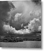 Everglades 0257bw Metal Print