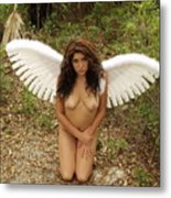 Everglades City Fl. Professional Photographer 4176 Metal Print