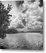 Everglades Lake - 0278abw Metal Print