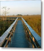 Everglades National Park Metal Print