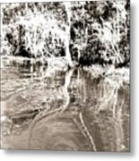 Everglades Reflections Metal Print