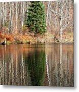 Evergreen - Buck Lake, Vermont Metal Print