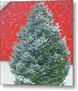 Evergreen In Winter #1 Metal Print