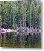 Evergreen Reflections Metal Print