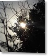 Everything Was A Blur Metal Print