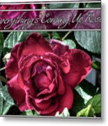 Everything's Coming Up Roses Metal Print