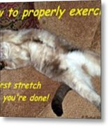 Exercise 101 Metal Print