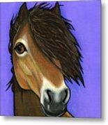 Exmoor Pony  Metal Print