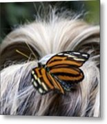 Exotic Hairdo Metal Print