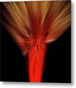 Exotic Wheat In Red Metal Print