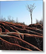 Exposed And Eroded Badlands Metal Print