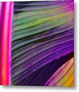 Exposed Metal Print