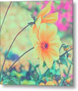 Expression 002 - A Better Life Metal Print