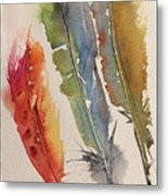Feather Expressions Metal Print