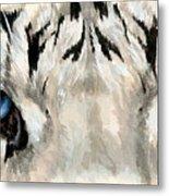 Royal White Tiger Gaze Metal Print